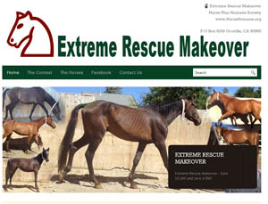 Extreme Rescue Makeover